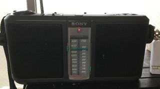 Srfa30002